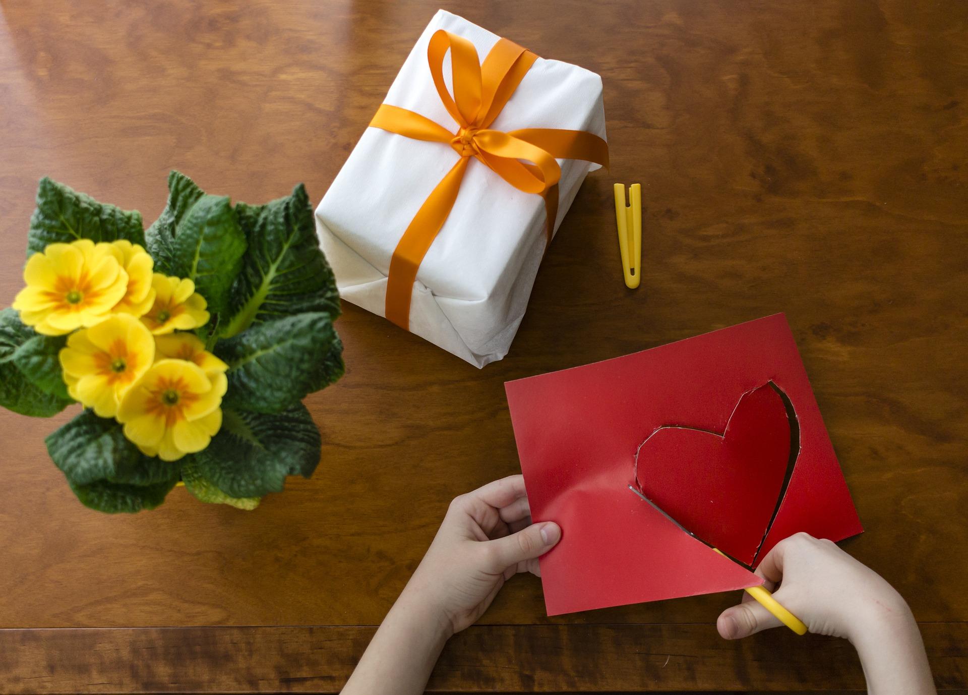 Idée de cadeau pour les fêtes